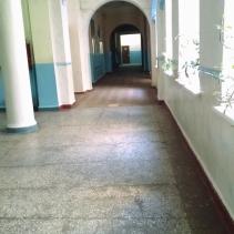 Alex's School