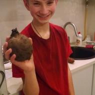 A big beet