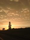 2014 Glorious Sky